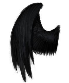 Violet's Wings