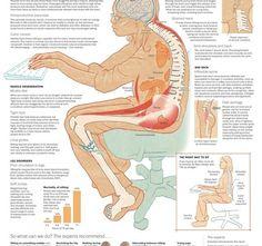 sitting-body