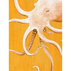 "GreenBox Art 'Orange Octopus' by Karin Grow Graphic Art on Wrapped Canvas Size: 24"" H x 18"" W x 1.5"" D"