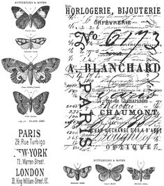 Amazon.com: Stampers Anonymous Tim Holtz Cling Rubber Stamp Set, Papillon CMS106: Arts, Crafts & Sewing