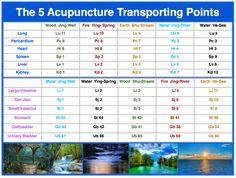 5-Shu-transporting-points.png 960 × 725 bildepunkter