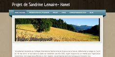 Sandrine Lemaire-Hamel