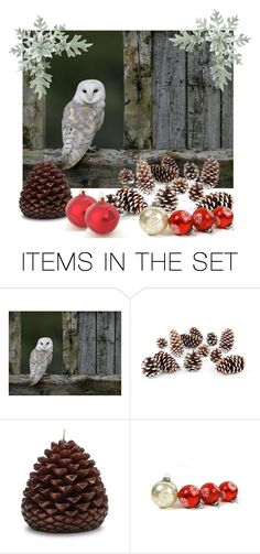 """""""Barn Owl"""" by heartsabustin ❤ liked on Polyvore featuring art"""