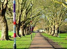 """The city's mysterious """"guerrilla knitter"""" has struck again, covering lampposts on Jesus Green with knitted coats to spread some festive cheer."""