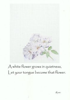 watercolors and drawings on quotes I like. Design Girl, Growing Flowers, White Flowers, Literature, Elephant, Drawings, Healing Quotes, Poetry, Art