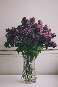Lilac bushes ...everyone had them ,,,Grandmother, Mother, Aunts, Neighbors, just the aroma floods me with sweet memories