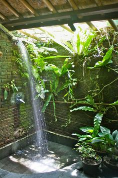Tree Bungalow in Bali I love to shower outdoors with the sun shining down upon me.  Love the plants in this outdoor shower too!