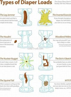 Different Types Of Poops