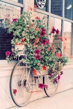 This would be so easy to do in the garden this spring! You can pick up an old bike for almost nothing at an estate sale. Lovely.