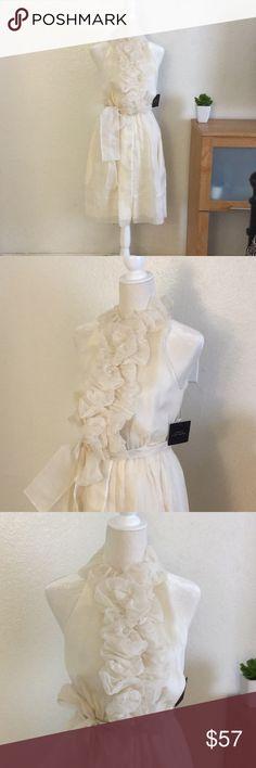 NWT ROBERT RODRIGUEZ IVORY SILK DRESS Never Worn, Excellent Condition  Beautiful Sleeveless Tie at Waist Dress 100% Silk Robert Rodriguez Dresses