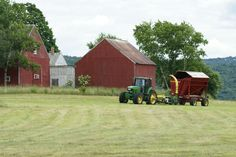 Picture of farm life