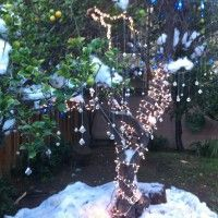 Jack frost told a story, handed out crystals from the tree.