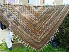 Annyone's shawl Fenna