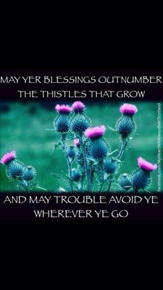 Scottish wishes for New Year