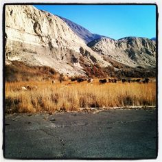 Somewhere in Kyrgyzstan via BrookevsTheWorld.com