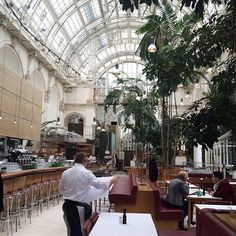 Palmenhaus Wien, Frühstückslokal   #Austria #vienna #travel #archifruit #travelgood #instagood #reiselust #reisesucht #traveladdiction #palmenhaus #wien #coffeetime #coffee #breakfastspot #bright #side #of #life #qualitytime #glasshouse #steel #glass