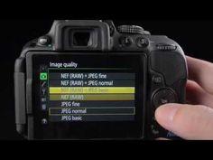 Nikon D5300 guide