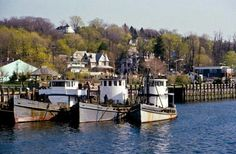 Northport lobster boats.
