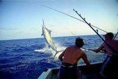 Pescar en Costa Rica.  Hay muchos tipos de peces.