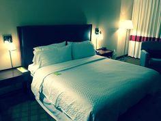 Free Hotel Review: Four Points by Sheraton Orlando International Drive #4P, #Adequate, #Average, #Award, #AwardBooking, #Bonus, #Breakfast, #Decent, #FourPoints, #FourPointsBySheraton, #Free, #FreePoints, #HarryPotter, #HarryPotterWorld, #Hotel, #HotelReview, #Hotels, #InternationalDrive, #Orlando, #PointBooking, #Points, #Potter, #Review, #Sheraton, #SheratonStarwood, #Shuttle, #Spg, #Starpoint, #Starpoints, #Starwood, #StarwoodPreferredGuest, #Stay, #TheWeeklyRecap, #Theho