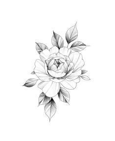 Rose tattoos, tatoo rose, body art tattoos, tattoo linework, p tattoo Rose Tattoo Hand, Hand Tattoos, Tatoo Rose, Rose Tattoos, Body Art Tattoos, Small Tattoos, Tatoos, Form Tattoo, P Tattoo