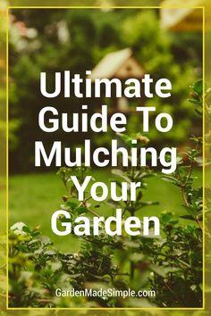 Garden Mulch, Garden Beds, Gardening, Veggie Gardens, Vegetable Garden, Wood Chip Mulch, Types Of Mulch, Rubber Mulch