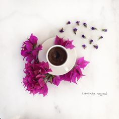 See this Instagram photo by @lavanta_ruyasi • 186 likes