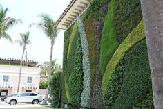 As the centerpiece of Worth Ave., Palm Beach, a cascading, curvilinear 840 square foot GSky Green Wall was installed as a large piece of living public art and as a tribute to Palm Beach's garden heritage.