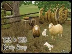 The Faery's Gifts • TS2 to TS3 Sheep Conversion - REQUEST