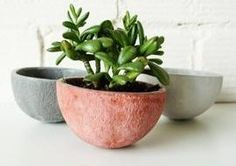 Fruit Shaped Planters by Spartan � The Kitchn