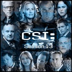 Love this show, great cast since Ted Danson & Elizabeth Shue joined. I still miss Grissom.