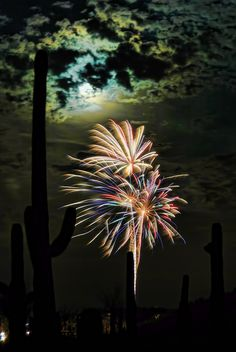4th of july cave creek 2015