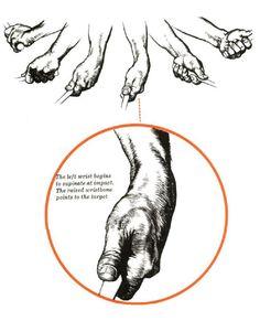 Ben Hogan. Wrist Flexion, Supination and Ulnar Deviation.