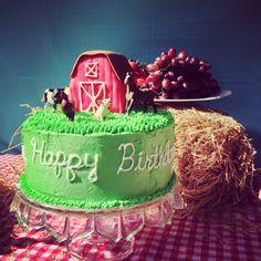 Barn cake farm party