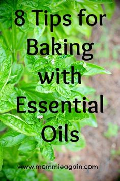 When baking with essential oils, there are certain things you need to be cautious about. 8 Tips for Baking with Essential Oils Cooking With Essential Oils, Essential Oil Uses, Essential Oil Diffuser, Young Living Oils, Young Living Essential Oils, Oils For Life, Doterra Recipes, Doterra Essential Oils, Essentials