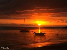 Goodnight from Mauritius, Africa