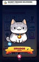 Cat Collector, Kitty Games, Image Cat, Cats, Fictional Characters, Gatos, Kitty Cats, Cat, Fantasy Characters