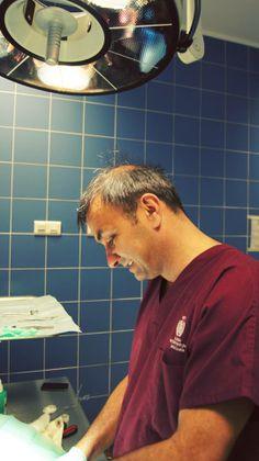 #vet #doktor #lekarz weterynarii,jacek szulc #veterinary #dog #cat #szulc