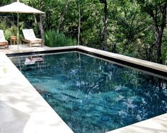 Fun Reasons To Own Luxury Swimming Pools – Pool Landscape Ideas Backyard Pool Designs, Swimming Pool Designs, Pool Landscaping, Backyard Patio, Pool Coping, Black Bottom Pools, Moderne Pools, Safari, Pool Colors