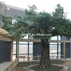 China Factory Wholesale Artificial Fiberglass Ficus Tree Customized Large…