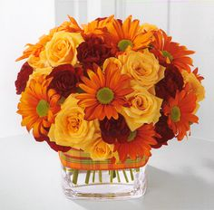 Google images fall flowers