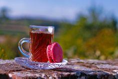 DIY: Homemade Rose Hip Anti-Wrinkle Cream, Oil & Tea... For The Health of It!