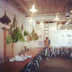 reception_upside-down plants