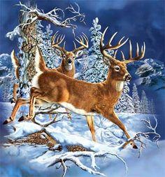 Gardner's Deer Forrest - http://www.moillusions.com/gardners-deer-forrest/