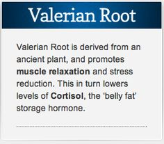"""Valerian Root known as """"Natures Valium"""". Take for relaxation both for muscles and for all over anxiety reduction. A great natural supplement to add to your daily health routine.-Rebecca Hahn, Coach of Hearts"""
