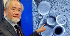 Nobel de medicina é categórico: Jejum é muito melhor do que comer a cada 3 horas