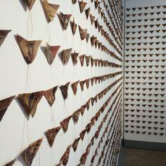 Thousands of #butterflies. Hugs n kisses