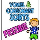 FREE 4 pages of Cut-Sort-Paste activities---Vowel or Consonant Sort---Long/Short Vowel Sort--- Ends with vowel/consonant sort