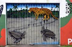 Barbara DALMAZZO-TEMPEL posted a photo:  Le Costa Rica est aujourd'hui un des pays pionnier en terme de protection de son environnement. Il savoure avec fierté sa place dans la liste des 20 pays ayant la plus vaste biodiversité, et il peut se targuer de posséder plus de 4% de la biodiversité mondiale.  Le pays cherche à maintenir son statut de pionnier en cette matière, préservant sa forêt, celle-ci représentant plus de 50% de son territoire. Toute cette richesse environnementale est due à…