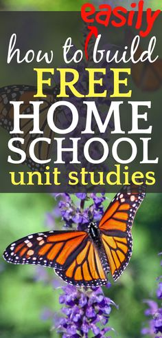 First Grade Curriculum, Homeschool Curriculum Reviews, Kindergarten Curriculum, Home Schooling, Unit Studies, The Unit, Christian Homeschool, Memes, School Schedule